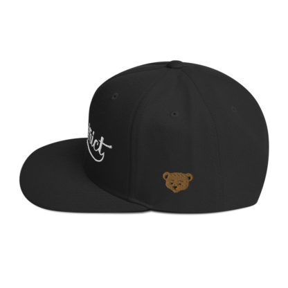 The_District_Clothing_Company_Snapback_Black_Side