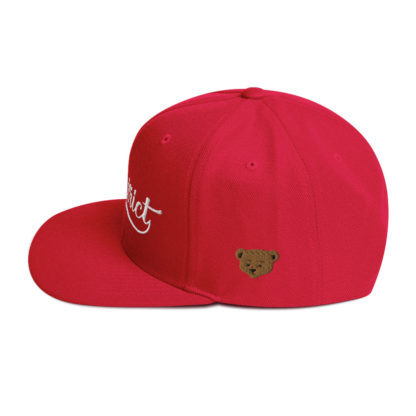 The_District_Clothing_Company_Snapback_Red_Side